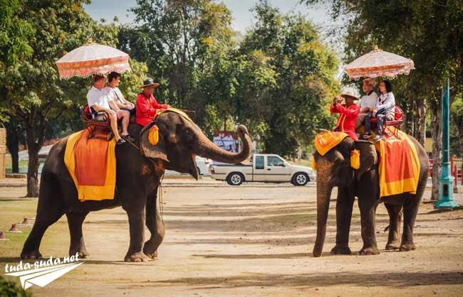 Катание на слонах Таиланд фото