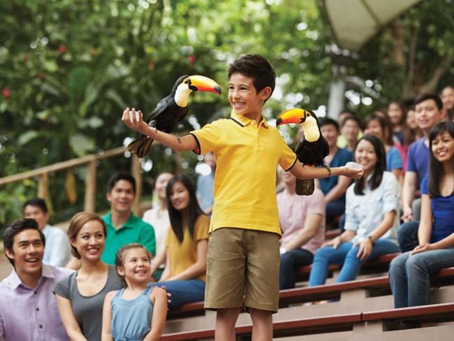 парк птиц Пхукет