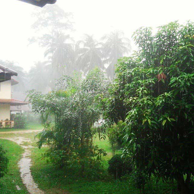 Сезон дождей Самуи