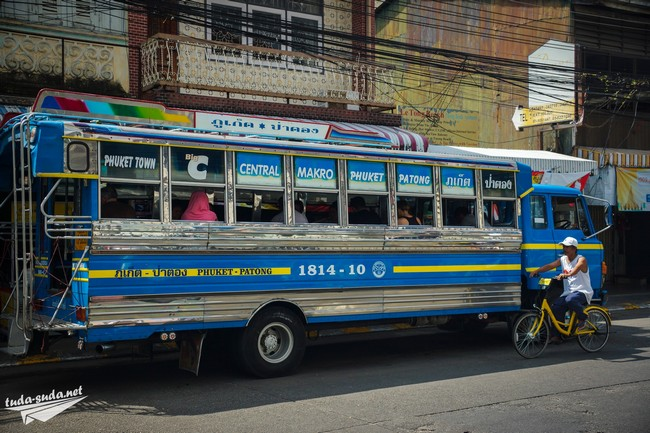 patong bus