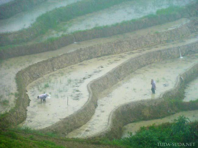 Крестьяне, Китай