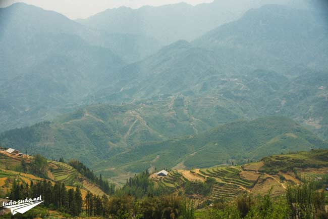 Рисовые террасы Вьетнам