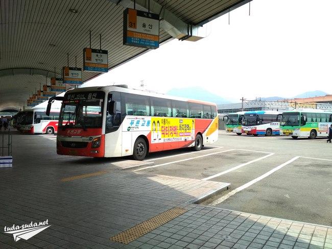 Автобус Южная Корея