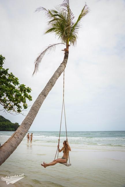 beach palm girl