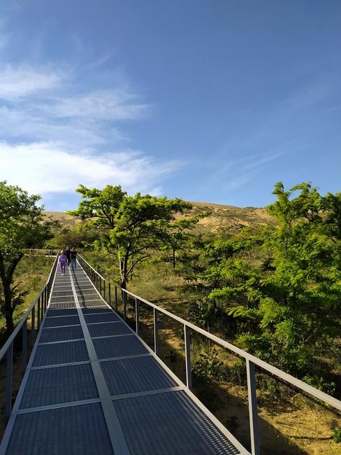 путеествие в Сарыкум
