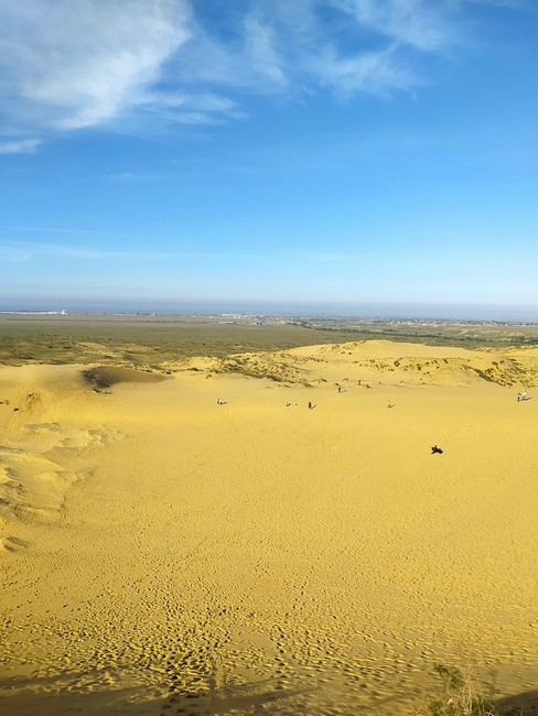 пустыня Сарыкум