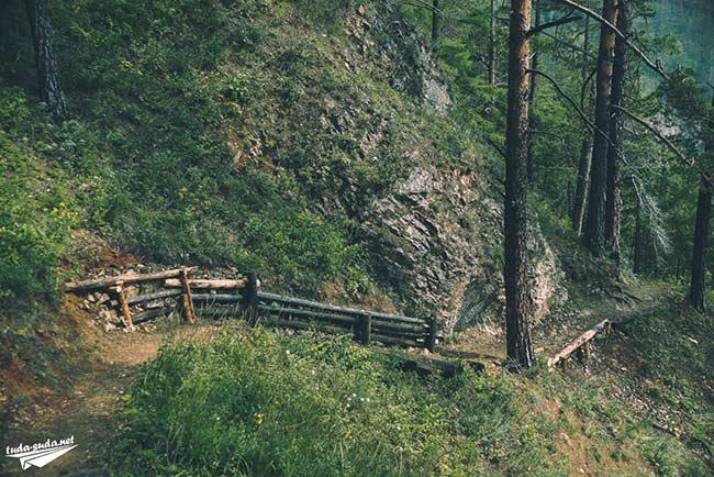 Тропа Байкал