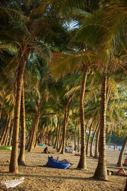 Palms Phuket