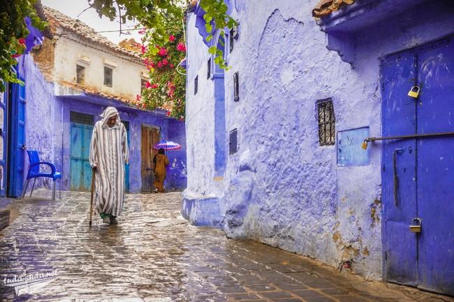 шефшауэн марокко фото