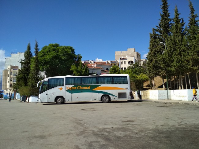 Автобус Шефшауэн