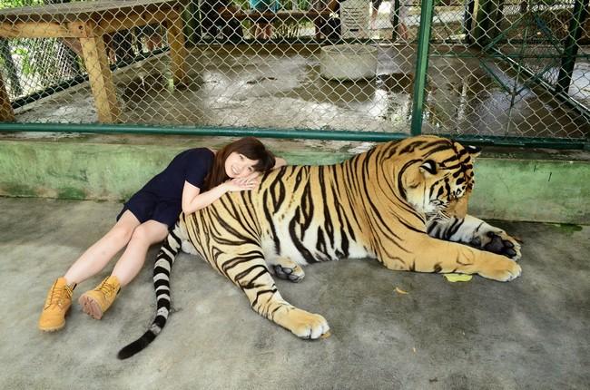 Tiger Kingdom Пхукет