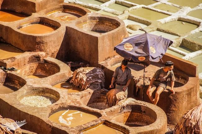 красильни марокко