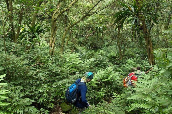 фукуок национальный парк
