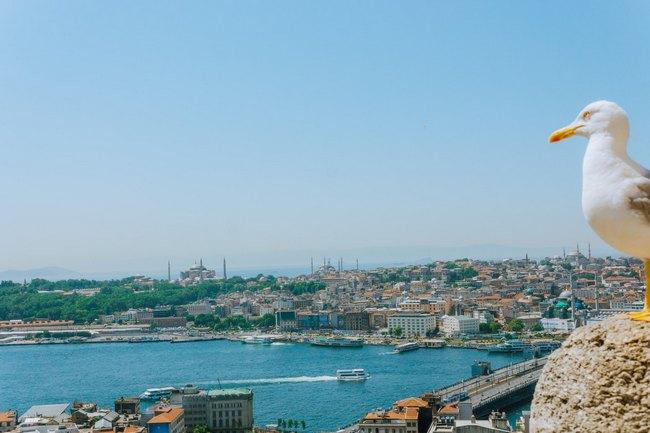 Как съездить в Стамбул