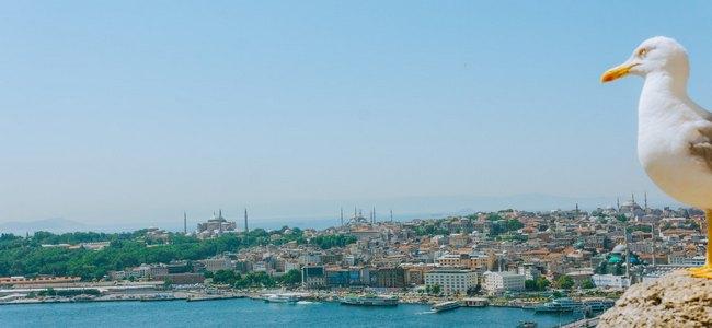 Поездка в Стамбул самостоятельно и недорого