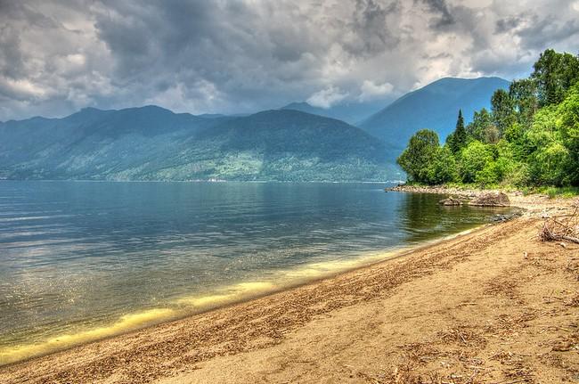 Телецкое озеро пляж
