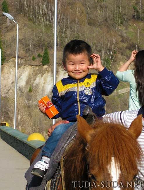 Конные прогулки Алматы фото