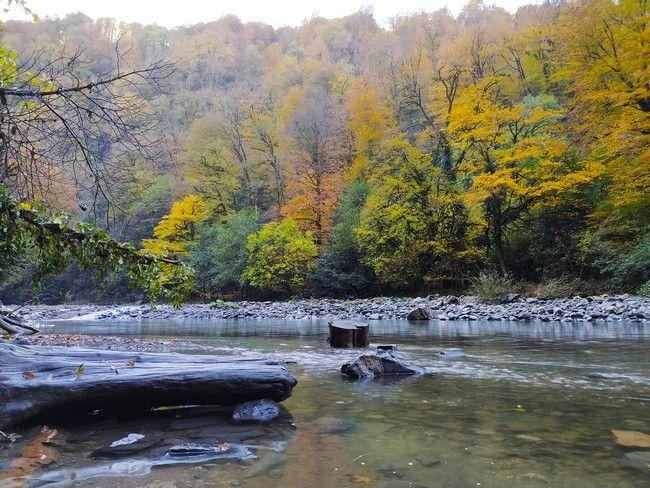 Река Сочи фото