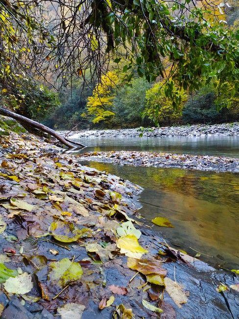 Река Сочи осень