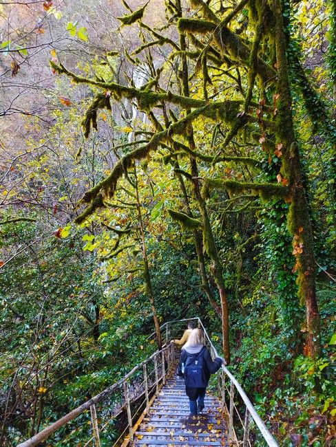 Водопад Ореховский лестница