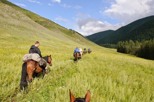 Катание на конях Алтай