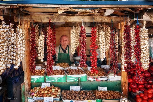 Албания цены