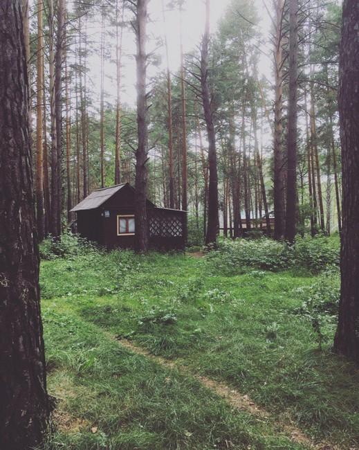 отдых на озере Линево Омская область