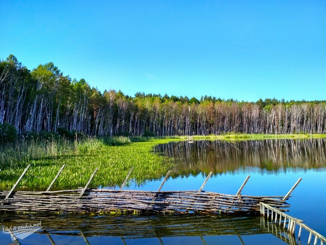 озеро линево муромцевский район