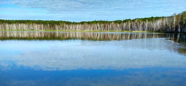 Озеро Линево Омская область