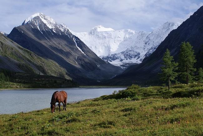 Белуха Алтай