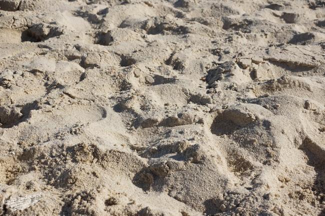 Пляж Чавенг песок