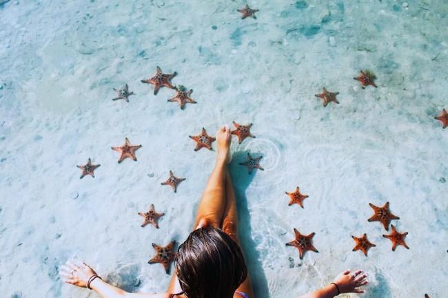 пляж морскими звездами Фукуок