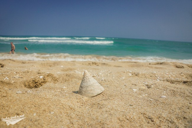 бай зай нячанг пляж