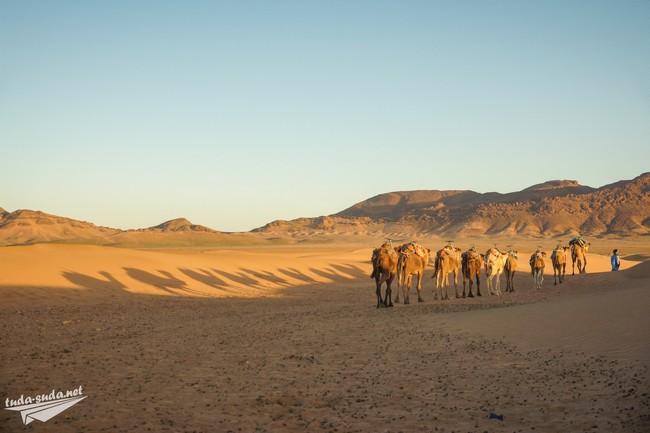 экскурсия в пустыню Марокко