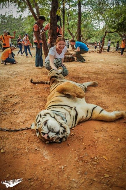 Экскурсия в тигриный монастырь