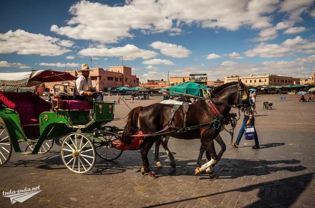 конная повозка марокко