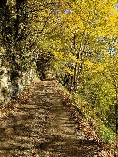 Дорога на Ореховский водопад